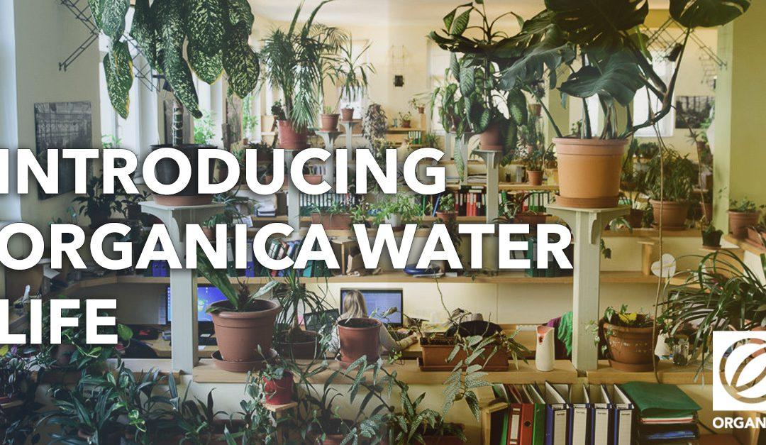 "Introducing ""Organica Water Life"""
